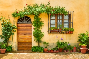 background-flowerpot-wall-green-facade-yellow-1593171-pxhere.com