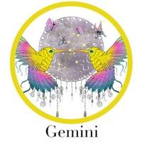Gemini-1